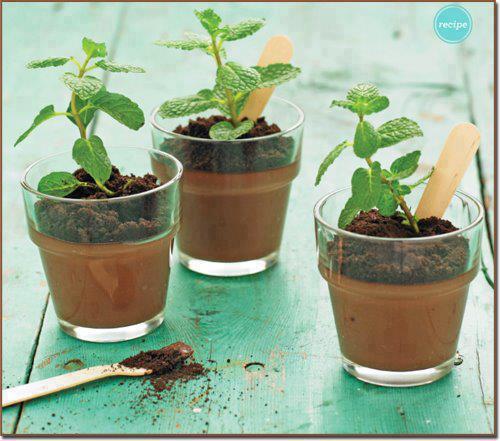 musse de chocolate com hortelã , bom para ecológicos
