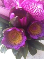 Flor de lotus , orquídea e antúrio especial